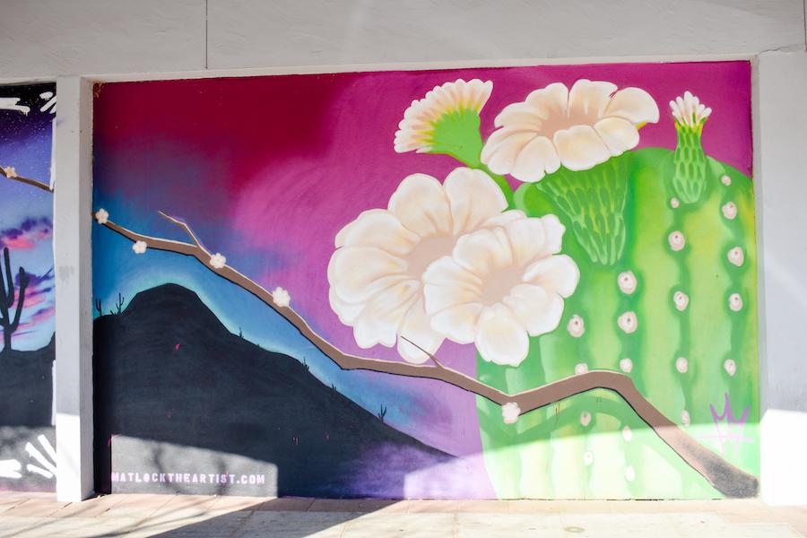 Desert Landscape Mural #5