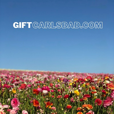 Gift Carlsbad Program Offers Instant Support For Carlsbad Businesses
