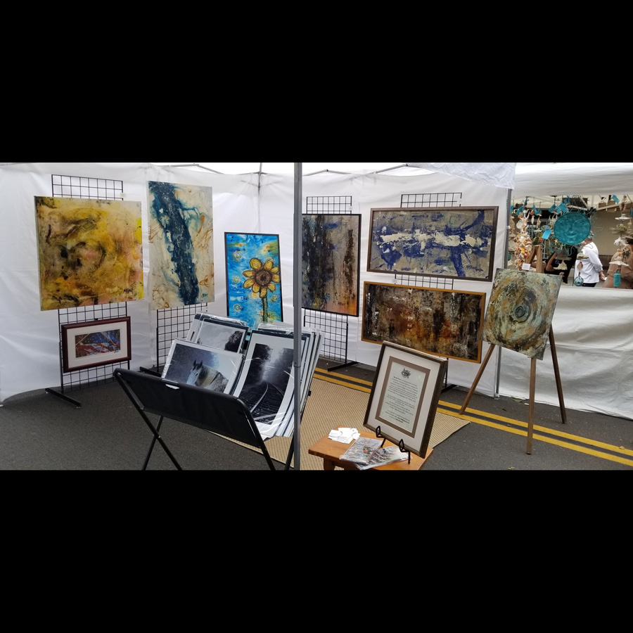 Eucalyptus Hills Gallery