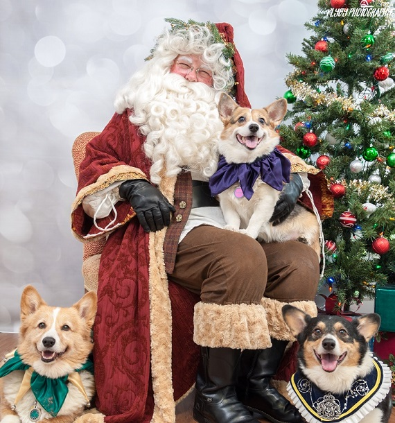 Pets on Parade Just Days Away