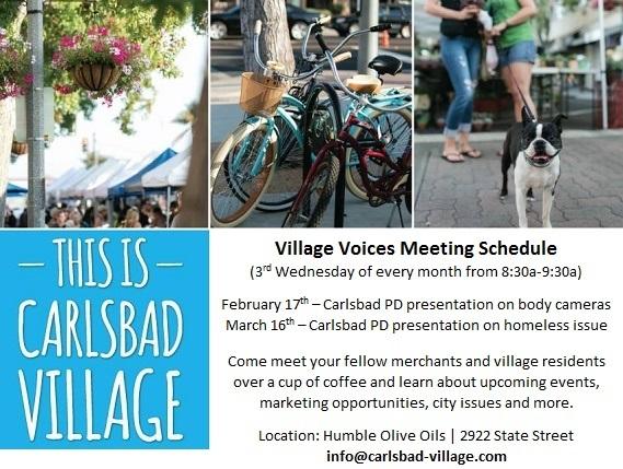Village Voices Feb Meeting