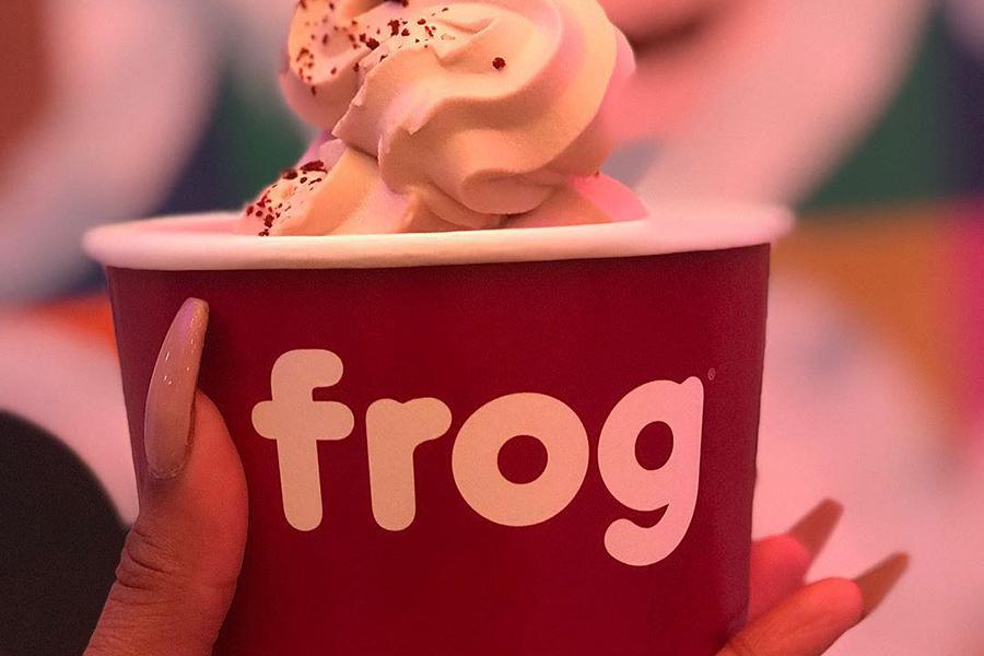 Frog Frozen Yogurt Bar