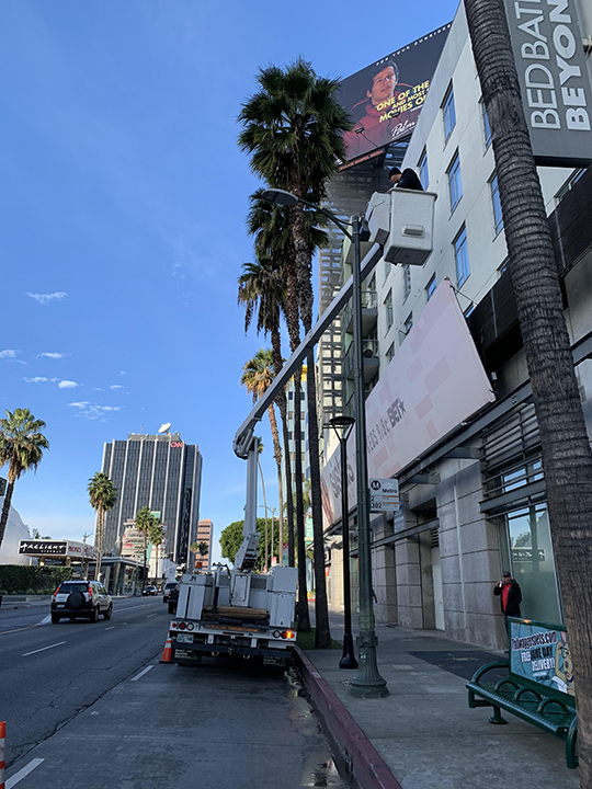 Crews installing palm tree up-lights on Sunset Boulevard in Hollywood, CA