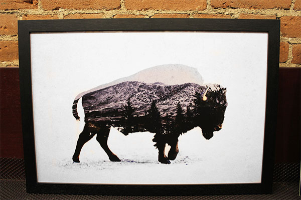 Framed Buffalo Print from Art Source International