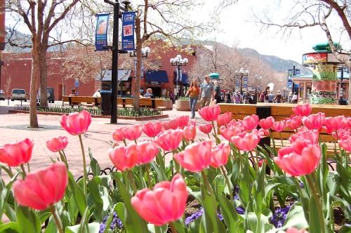 Boulder Walking Tours