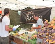 Black Cat at the Farmers Market