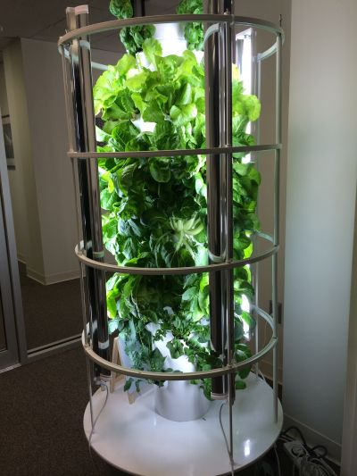Tower Garden Aeroponic Home Vertical Food Forest Youtube Inside