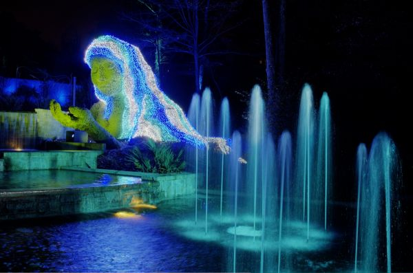 Garden lights holiday nights at the atlanta botanical Atlanta botanical gardens promo code 2016