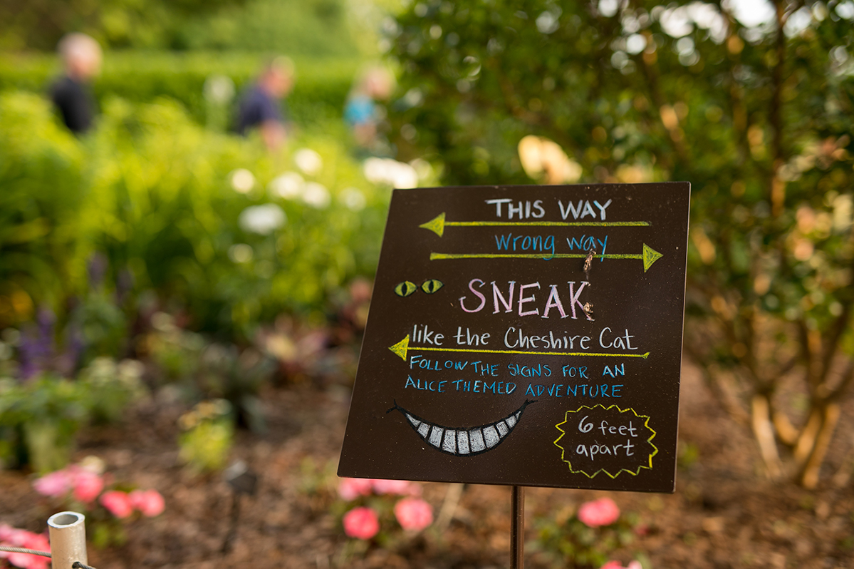 One-way signage to help guests maintain their distance.