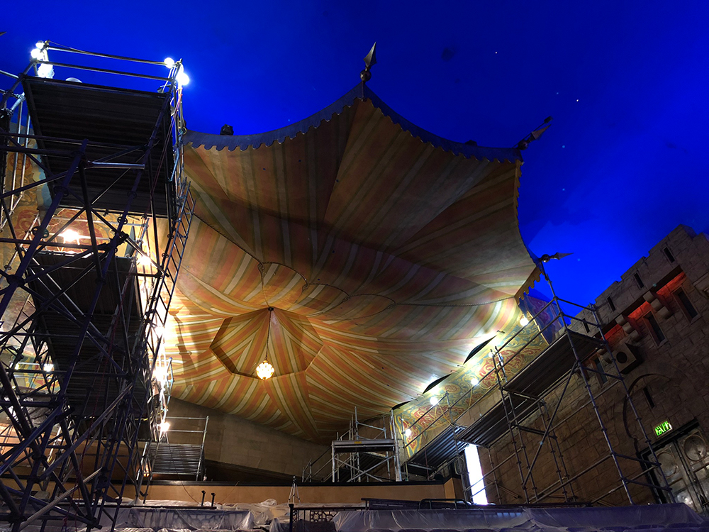 A team of restorers spent 10-12 hours a day on the Fox's canopy.