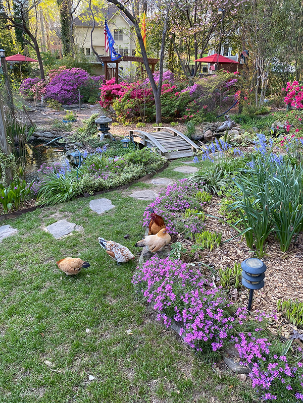 Hua's garden in Snellville is so beautiful that couples seek it out as a wedding venue.