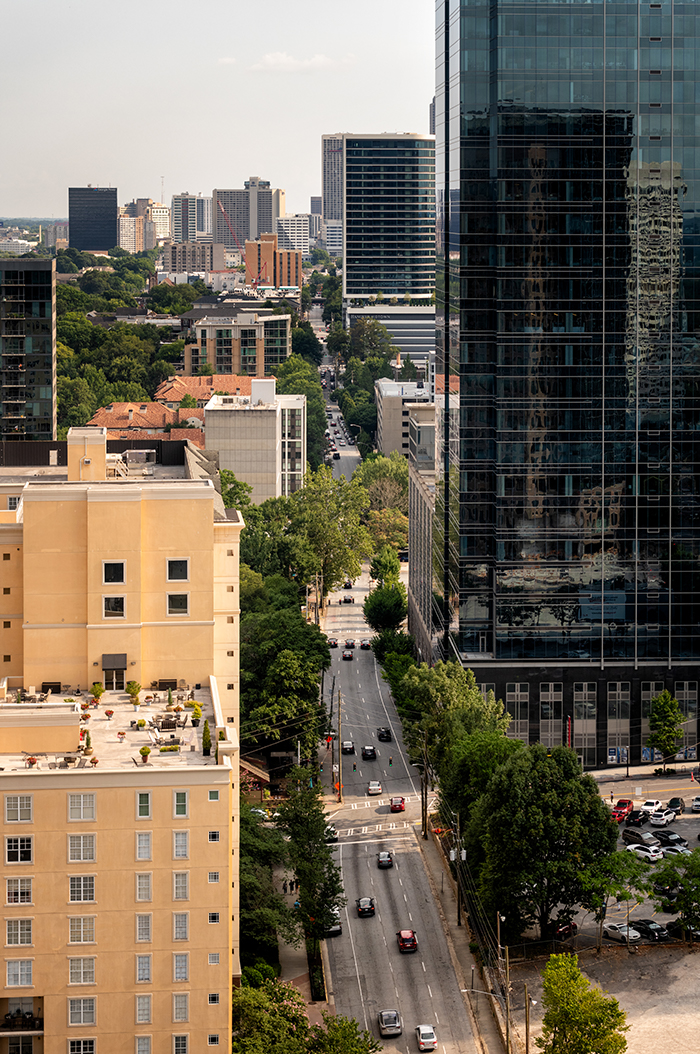 There are more than 2,500 trees in the Midtown Improvement District's right-of-way, and about 1,000 of these have been added within just the past five years.