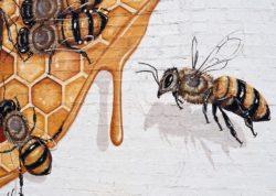 artwork bees and honey