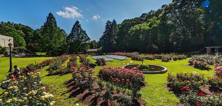 Raleigh Rose Garden Raleigh Nc