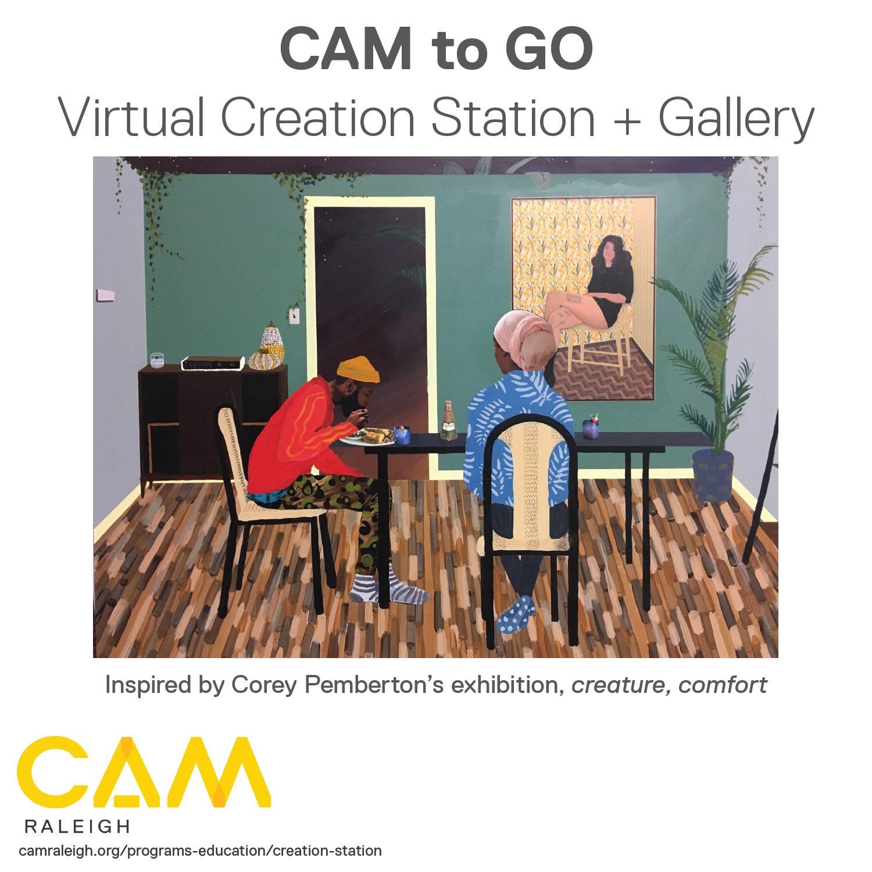 CAM raleigh flyer