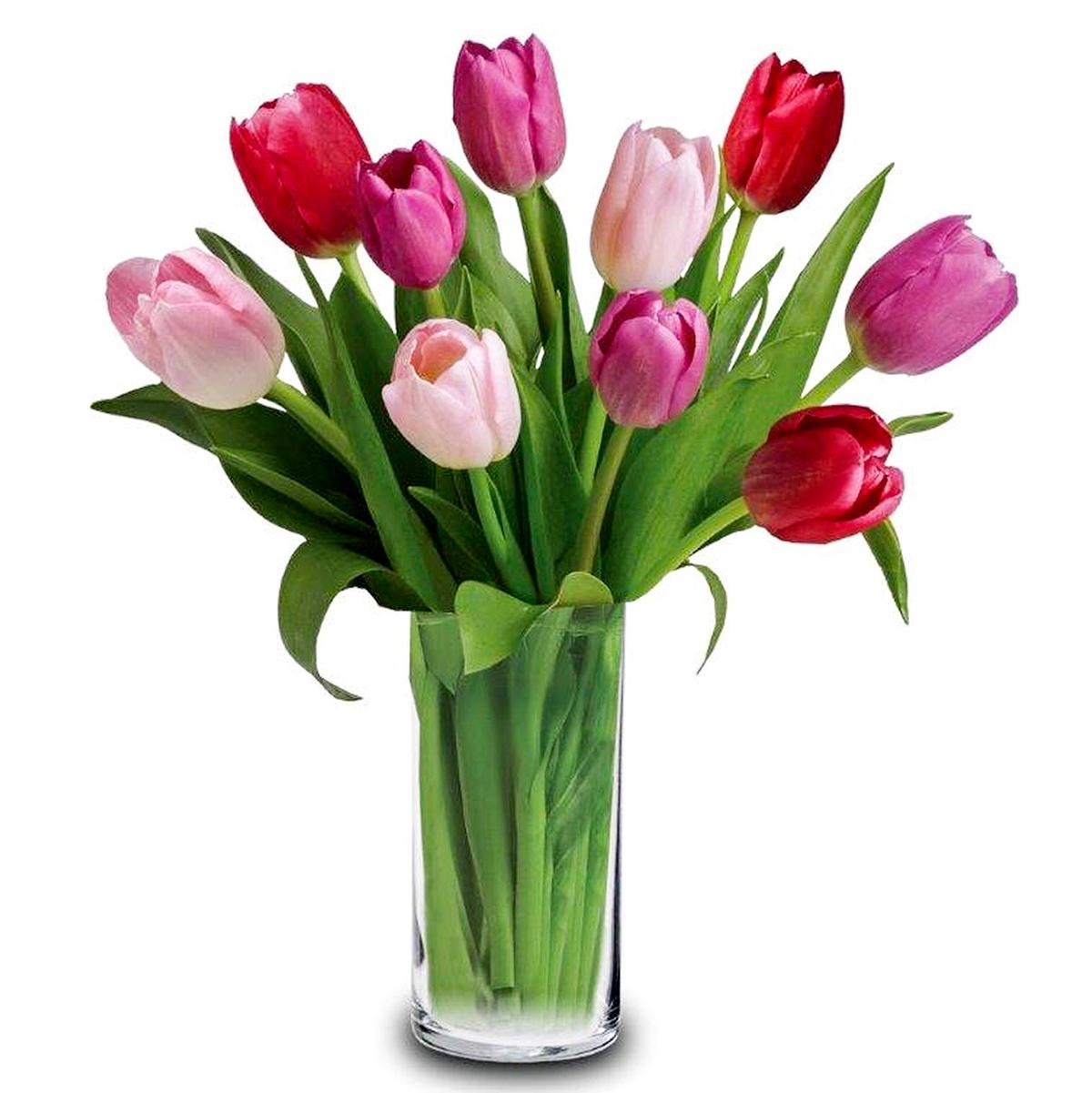 Carlton's flowers - tulips in a vase