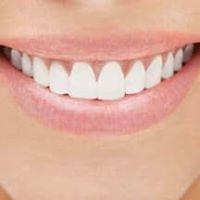 Shore Dental Arts