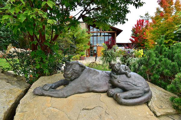 Akron Zoo Downtown Akron OH