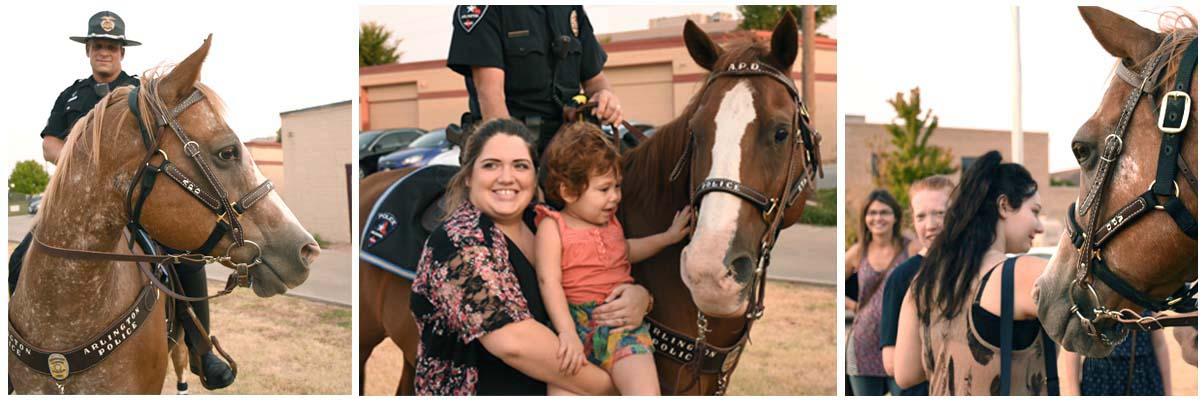 APD Mounted Patrol #2