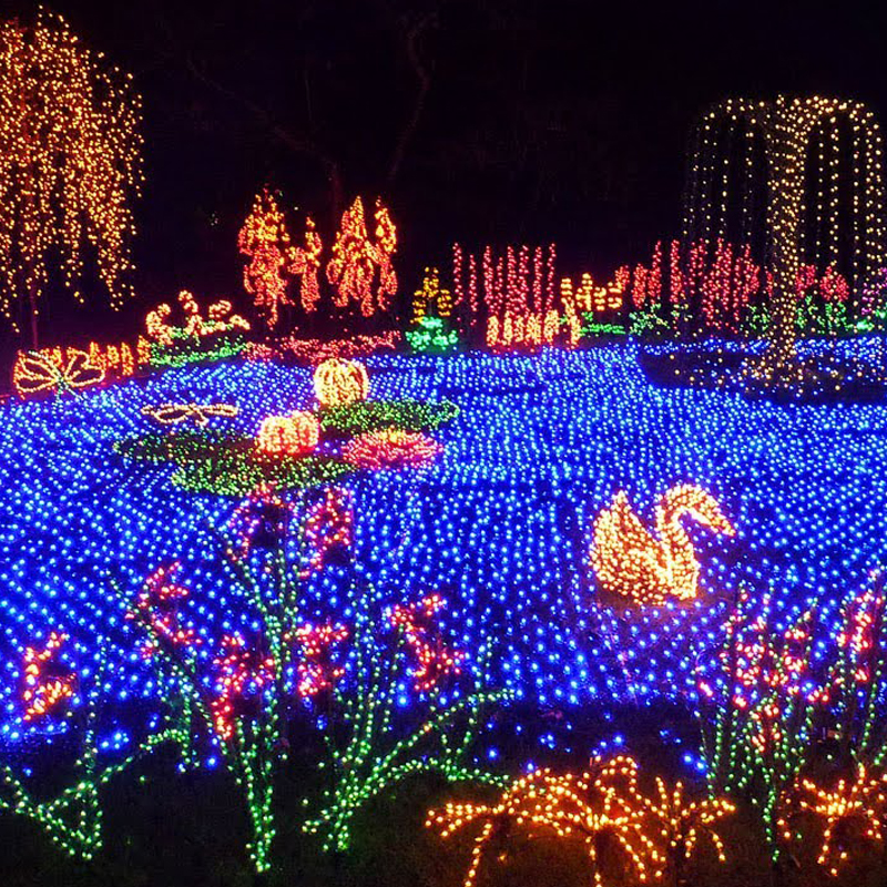 Bellevue Botanical Garden - member 2 - Garden D'Lights Downtown Bellevue, WA
