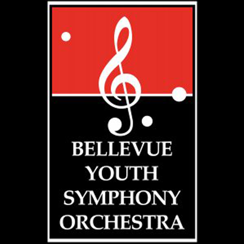 Bellevue Youth Symphony Orchestra Member 2